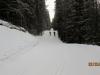 Start of Elkpass trail PLPP