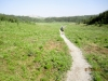 Typical trail through meadows