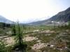 At Citadel Pass looking towards Assiniboine