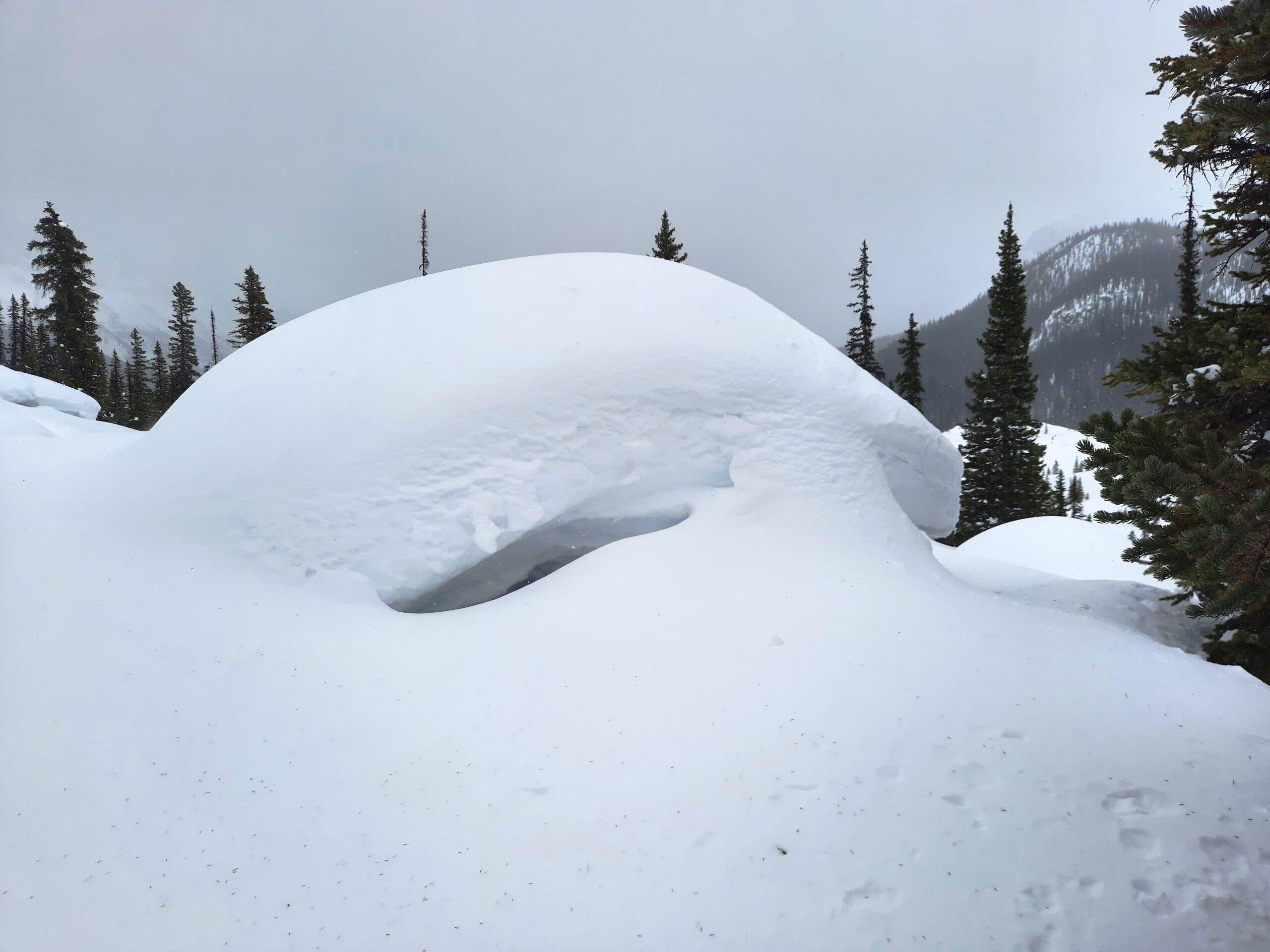 No lack of snow coverage