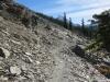 wapta-trail