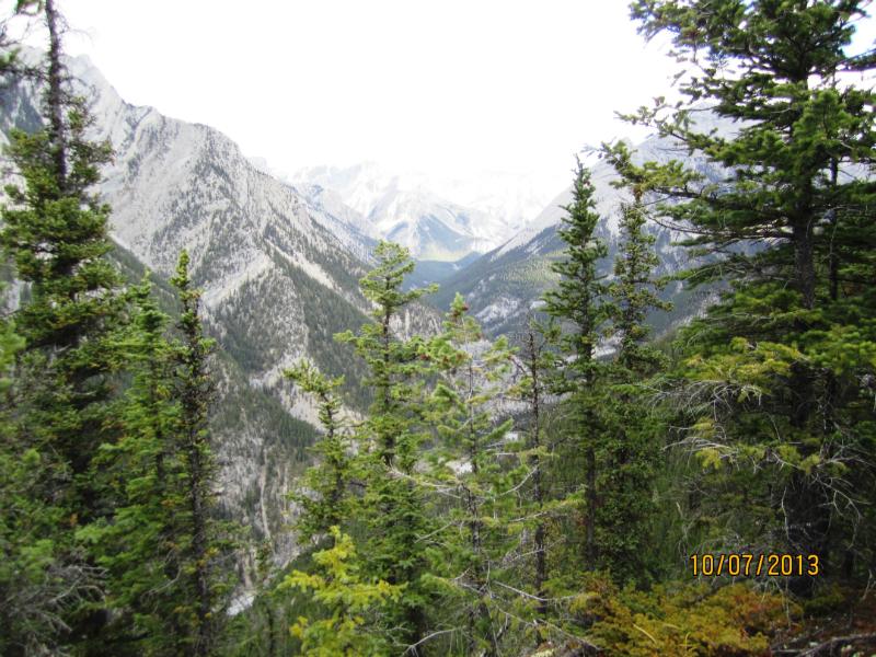 Looking down Cougar Creek