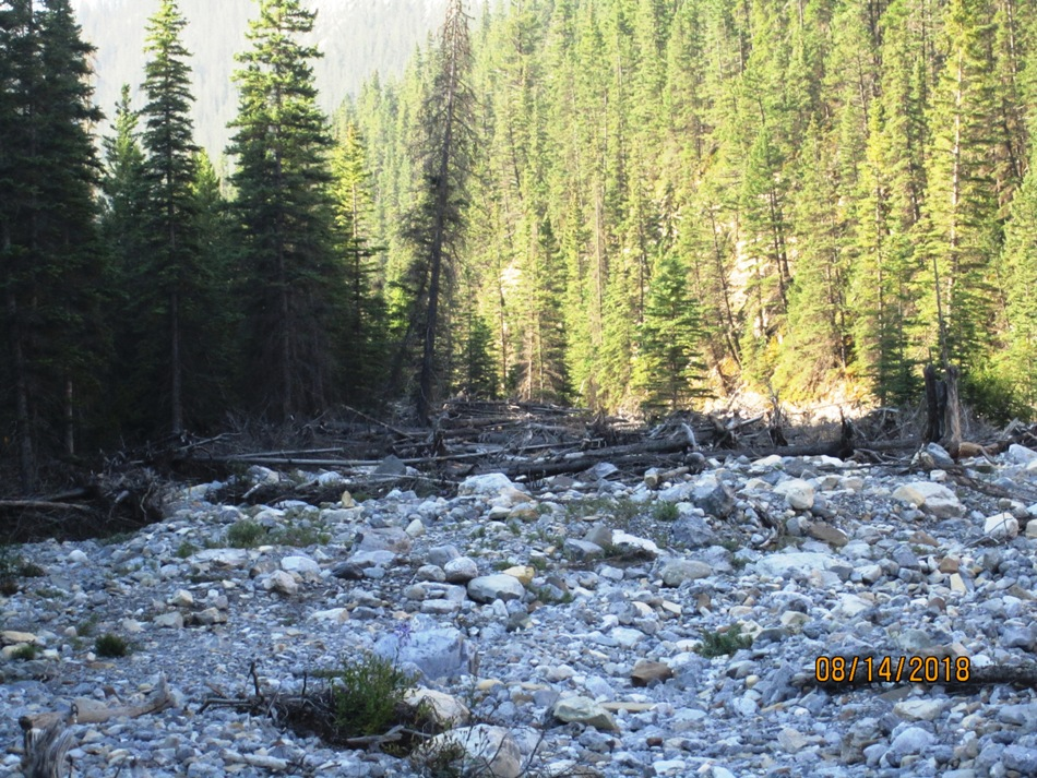 3231-entering-the-creek-and-looking-back-at-what-we-had-missed