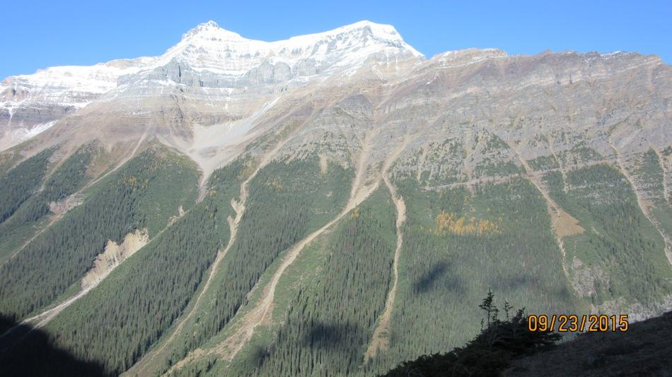 Close up of avi slope Mt Shoel