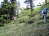 2879-no-trail-steep-climb