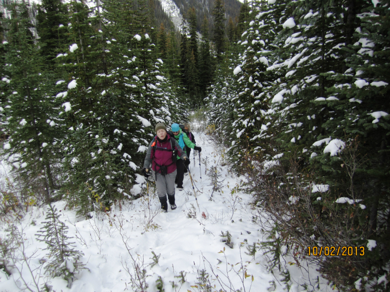 At the start of the trail off Burstall Pass