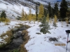 3310-larch-beauty-in-meadow-before-ridge