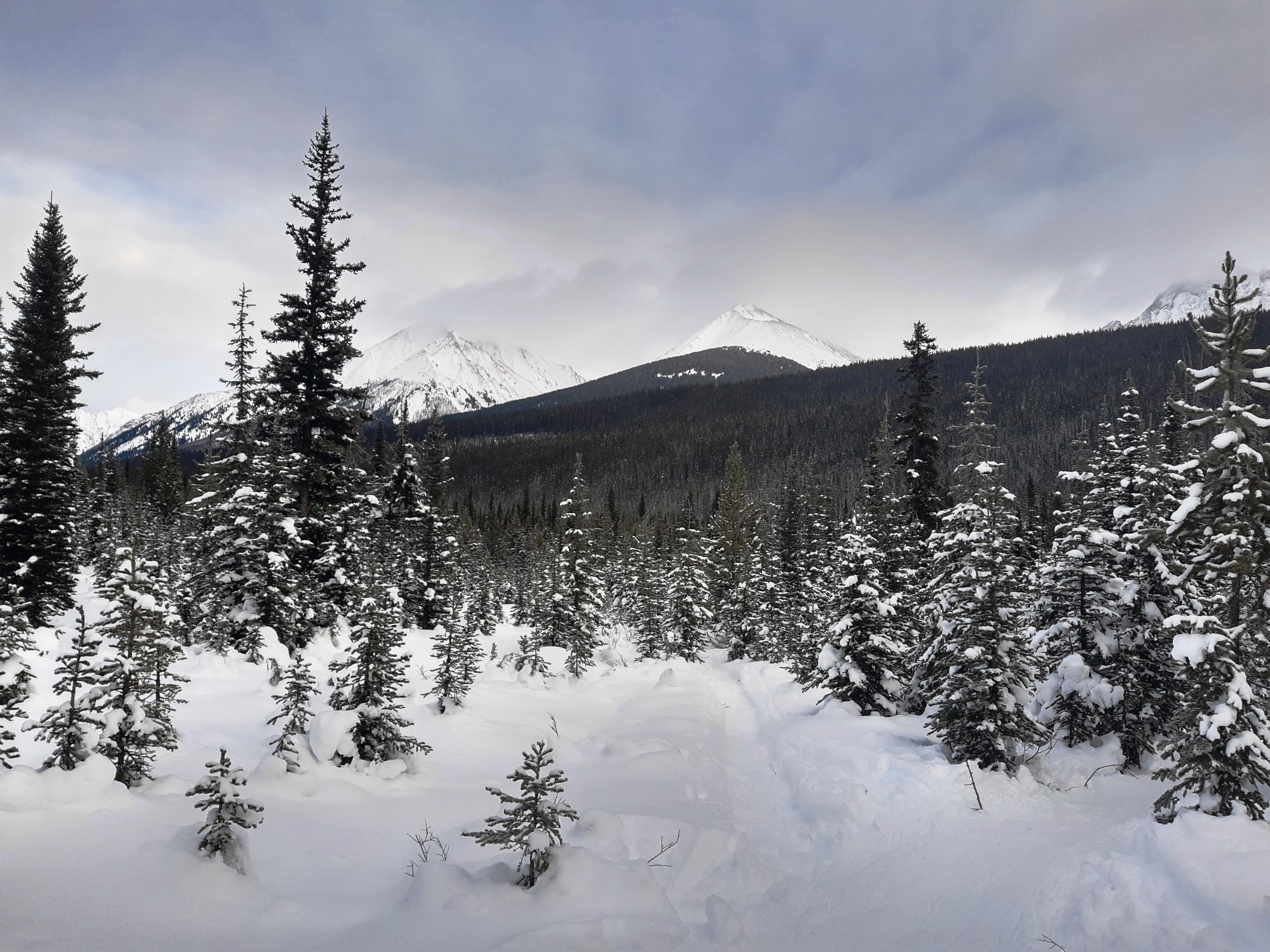 2-Looking-towards-Galatea-Mountain