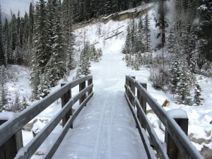 Banff Springs - Cross Country Skiing - Photo # 10