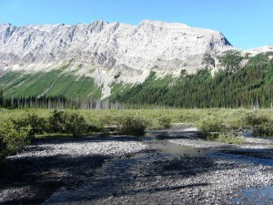 Burstall Creek Alluvial Fan