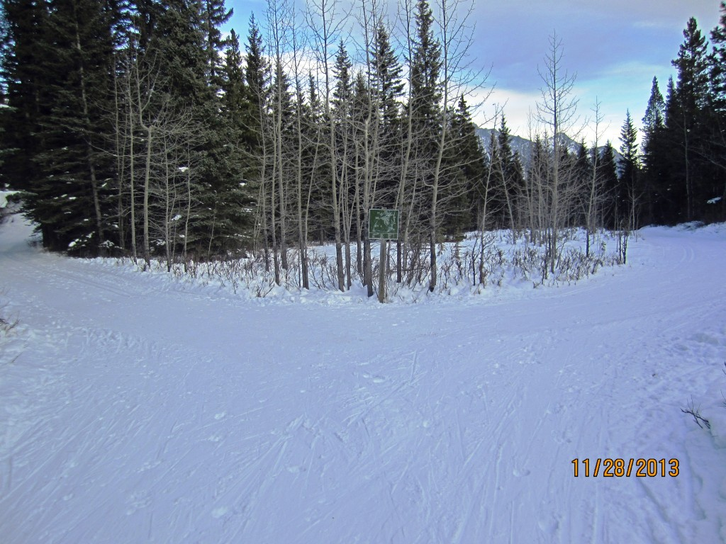 Trail left from Kovach Lookout right Link to Aspen
