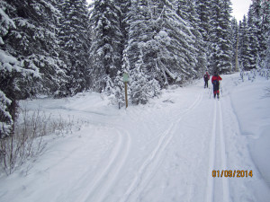Cross Country Skiing Trail Pipestone