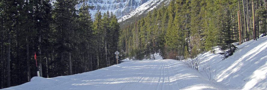 Cross Country Skiing Moraine Lake Road Lake Louise.