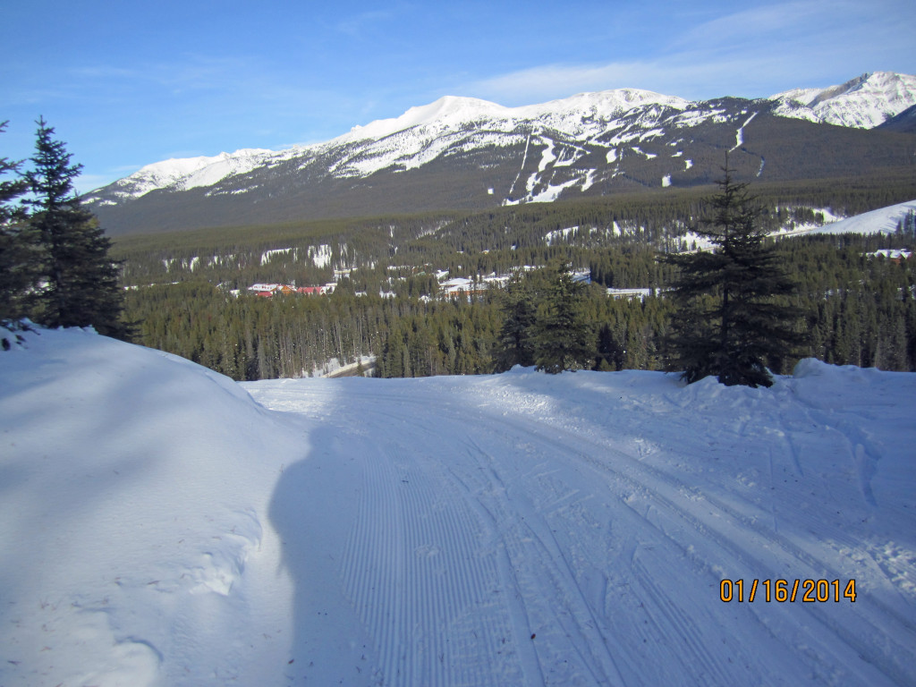 Lower Tram Line Lake Louise. Looking in to the Village and ski hill behind