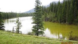 Yamnuska Natural Area Hike
