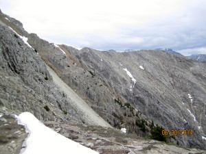 The grey scree is the way.Follow cairns on right or left depending on conditions