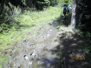 Yes there is a muddy section about 1 km from the trail head