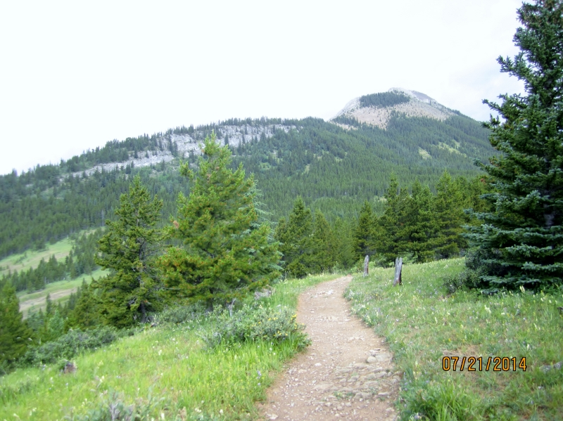 Trail up the mound .Valley meadow & Nihahi Rdge behind
