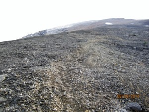 Scree trail after tree line