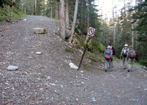 Junction at the ski out to Healy Trail