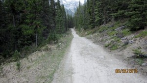 The trail 250m downhill to Banff
