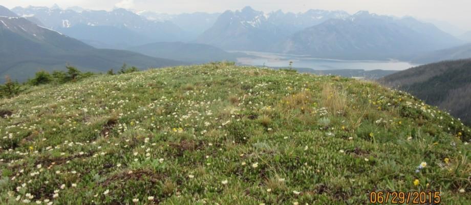 Rummel Ridge Hike
