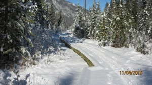 Section of trail renovated for the High Rockies Trail