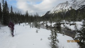 Snowshoeing along the creek