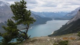 Aylmer Lookout at Lake Minnewanka
