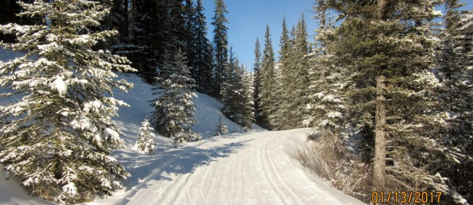 Cross Country Skiing the Spray River Loop from Banff Springs Hotel