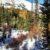 Marmot Basin Kananaskis